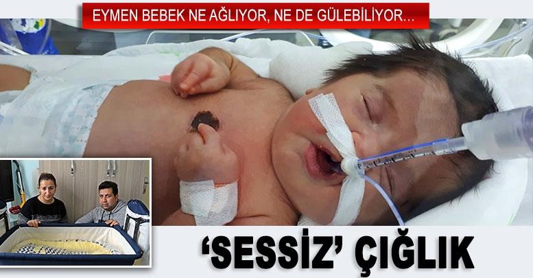 'SESSİZ' ÇIĞLIK