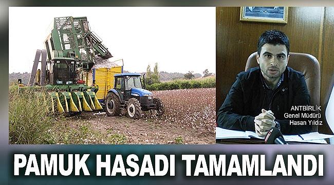 PAMUK HASADI TAMAMLANDI