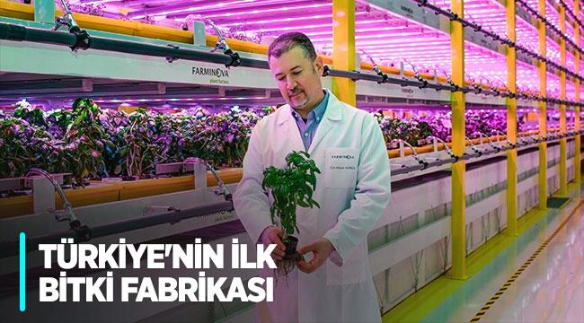 Türkiye'nin ilk bitki fabrikası