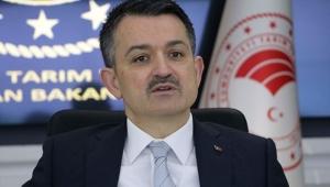 Üreticilere 886 milyon lira destek ödemesi başlıyor