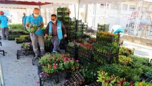21 mezarlığa 58 bin çiçek