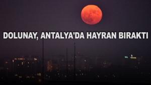 Dolunay, Antalya'da hayran bıraktı