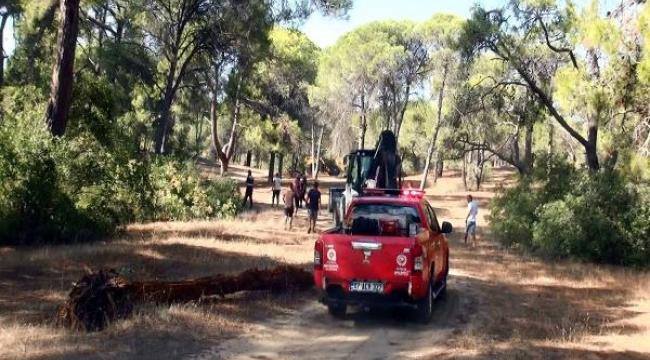 Manavgat'ta ormanı yakarken yakalanan şüpheli: Amacım dikkat çekmekti